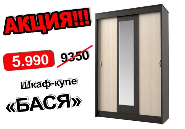 Шкаф-купе БАСЯ