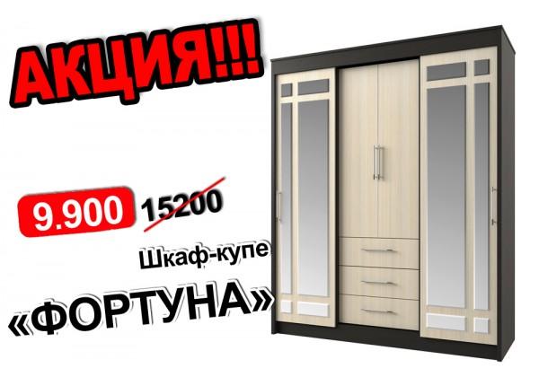 Шкаф-купе ФОРТУНА